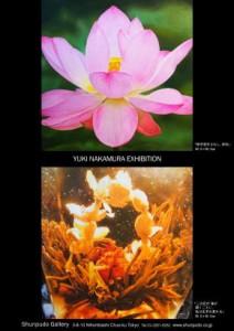 yukinakamura14