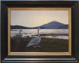 大畑 稔浩 「白鳥と富士(山中湖)」 10P